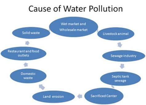 Essay on the problem of pollution in kathmandu